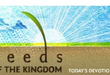 Seeds of the Kingdom Devotional 19th January 2021